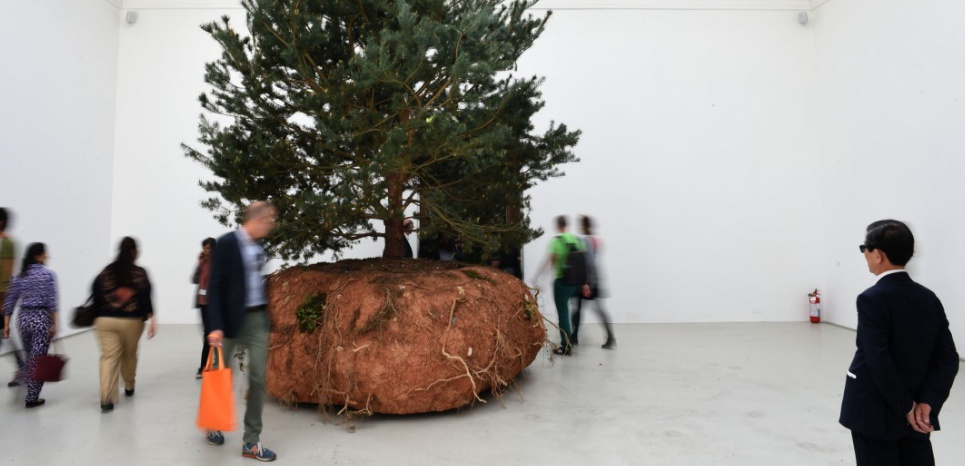 The work 'Revolutions' by Celeste Boursier-Mougenot is on display in the French pavilion at the Biennale in Venice, Italy, 06 May 2015. The 56th international art show 'La Biennale di Venezia 2015' runs from 09 May to 22 November 2015. Photo: FELIX HOERHAGER/dpa - NO WIRE SERVICE -